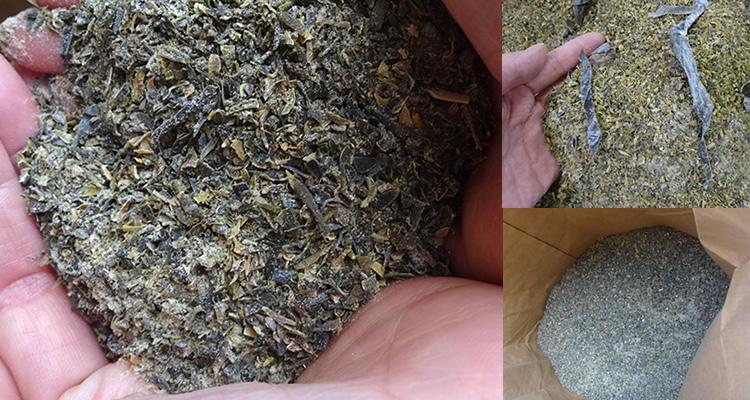 昆布 鶏の餌 肥料