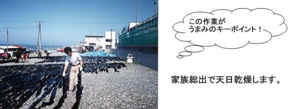 北海道 昆布研修レポート